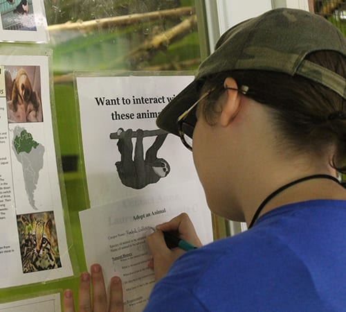 Daily Schedule - Camper filling out Adopt An Animal sheet - Cub Creek Science and Animal Camp