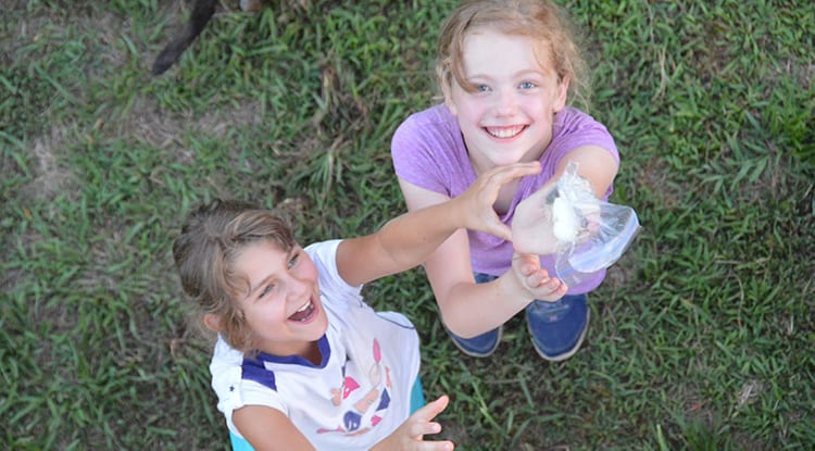 Evening Activities - Egg Drop - Cub Creek Science and Animal Camp