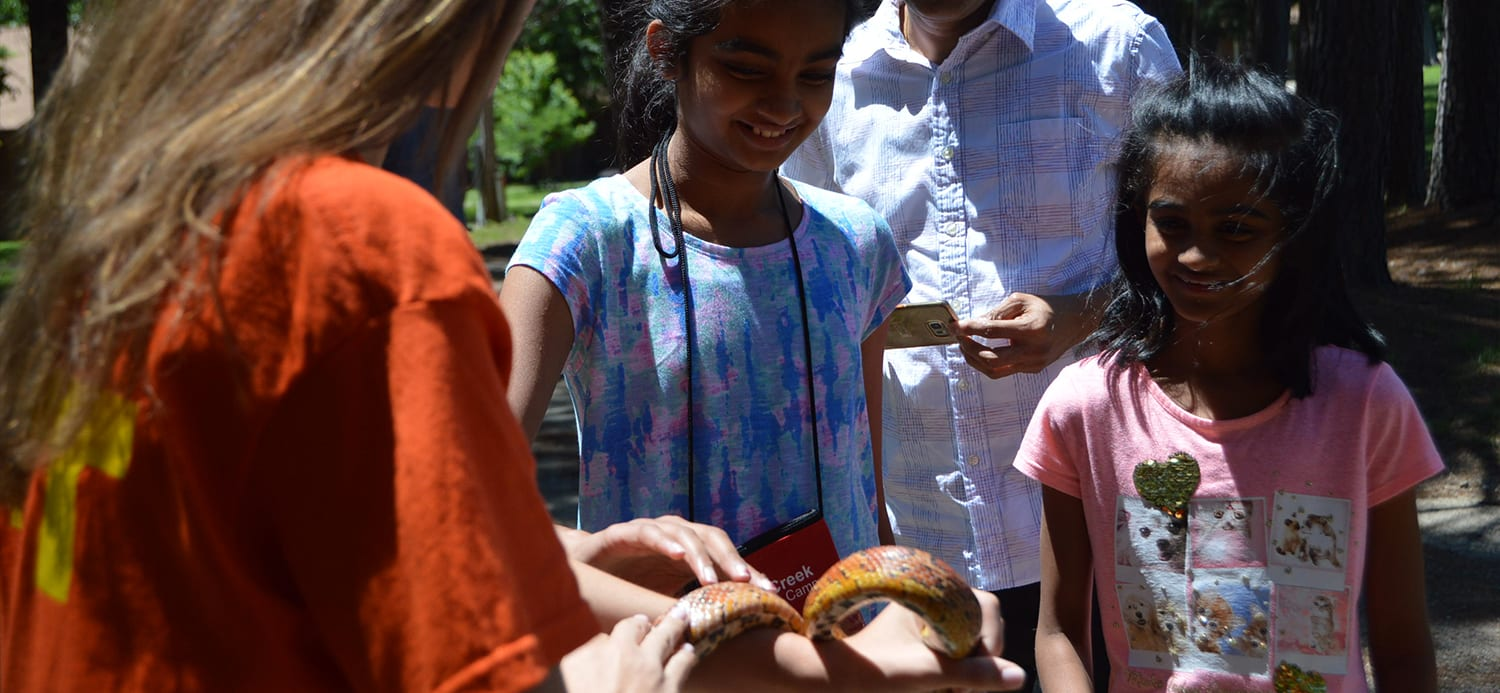 First Time Families - Camper family looking at Corn Snake - Cub Creek Science and Animal Camp