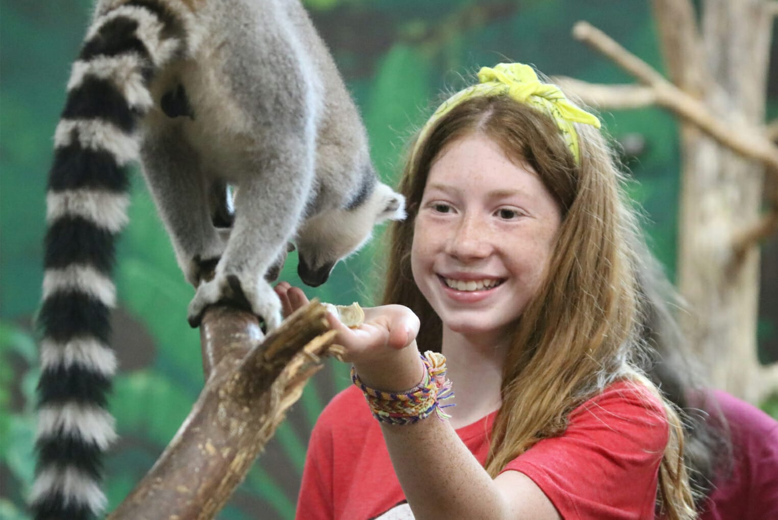 Animal Camp - Cub Creek Science and Animal Camp - Girl camper feeding lemur