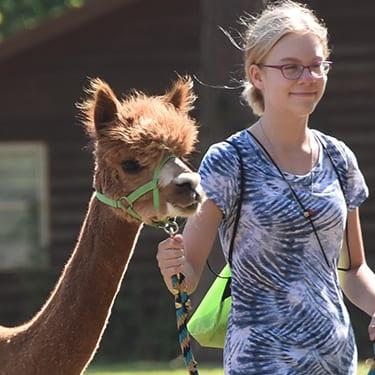 Adopt an Animal - Girl walking an Alpaca - Cub Creek Science Camp