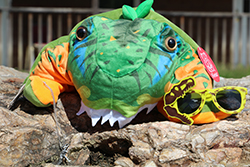 Land Before Time Care Package <br> Includes: Dinosaur Hat, Prehistoric <br> Necklace, Dinosaur Sunglasses - $16.00