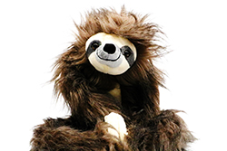 Medium Sloth Plush Toy - $16.00
