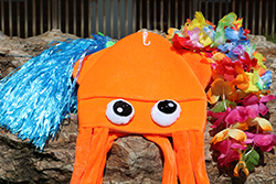 Surf's Up Care Package <br> Includes: Squid Hat, Colorful Leis, <br> Grass Skirt - $12.00