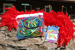 Wacky & Wild Care Package <br> Includes:  Feather Boa, Hand Tattoos, <br> Light Up Head Band - $8.00