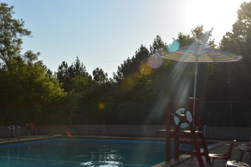 Pool Facility - Cub Creek Science and Animal Camp