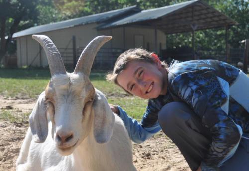 Nubian Goat - Cub Creek Science Camp